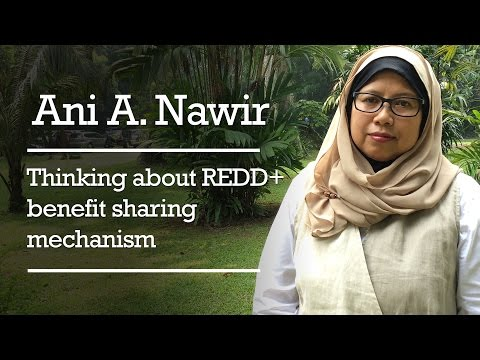 Ani A. Nawir - Thinking about REDD+ benefit sharing mechanism (BSM)