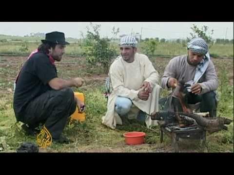 Kidnapped Italian activist killed in Gaza