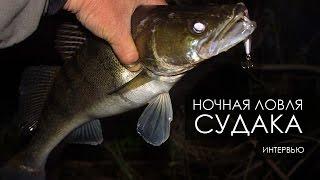 Ночная ловля судака в Киеве.
