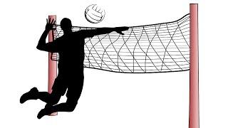 Волейбол. Мусэрский. Ответы на вопросы в прямом эфире от 07.04.2019
