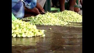 Madurai Malli HD