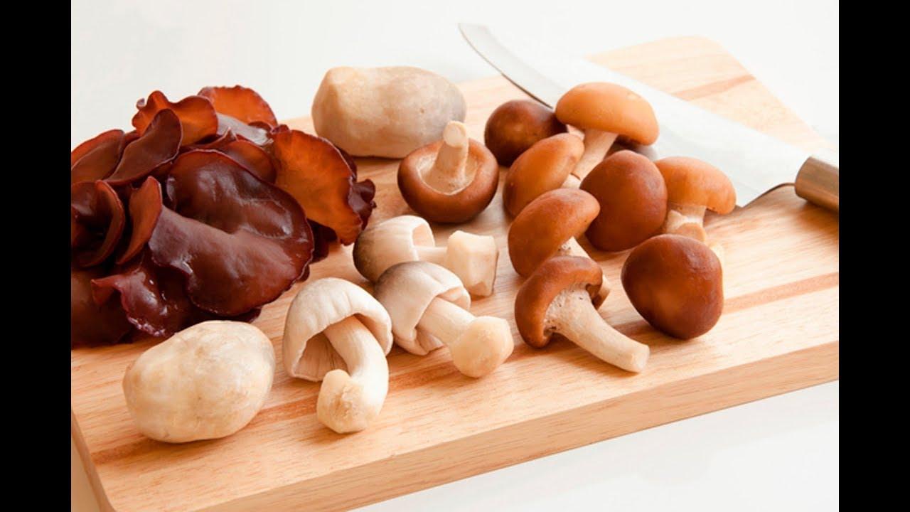 De los hongos beneficios