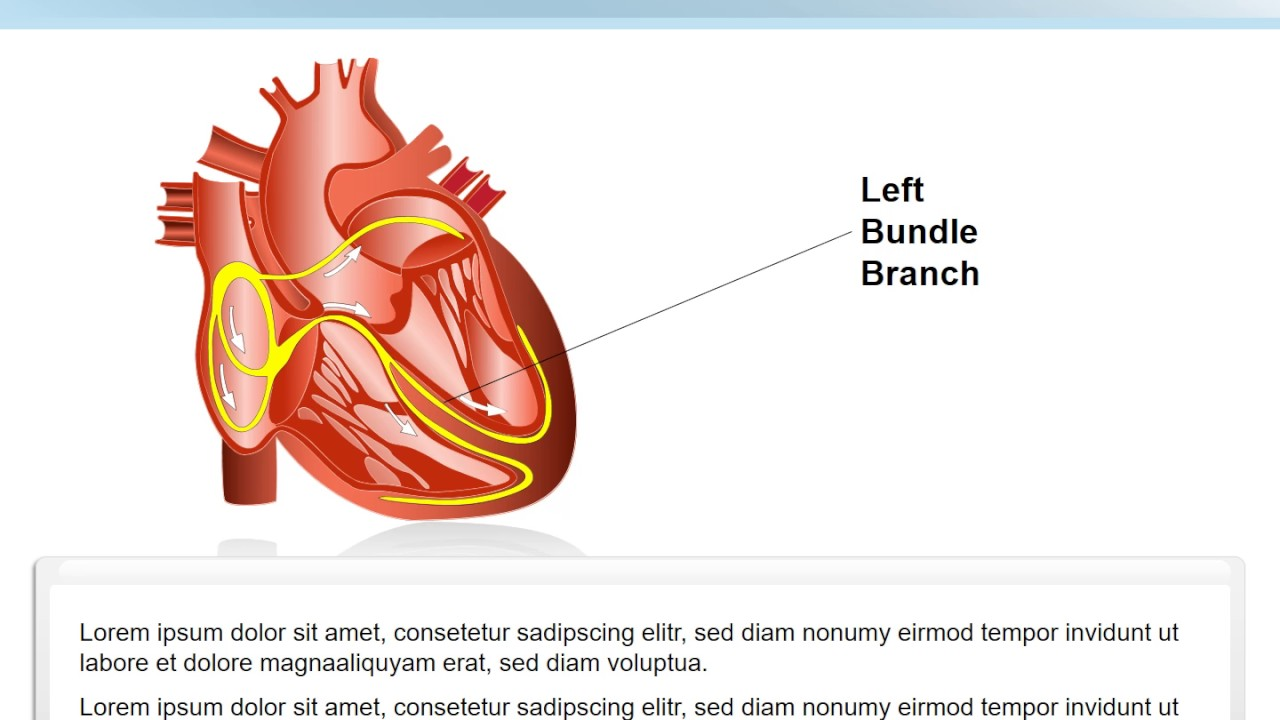 System Heart PowerPoint shapes - System Heart - ImagineLayout.com ...