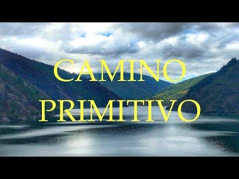Camino de Santiago Primitivo | Etapa 6 | Berducedo - Grandas de Salime