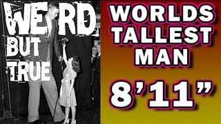 """AMERICA'S 'GENTLE GIANT' - The Story of Robert Wadlow, The Tallest Man in the World"" #WeirdButTrue"