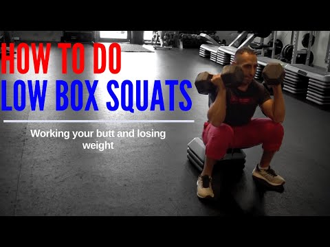 Weight Loss Exercise How to Do Low Box Squats