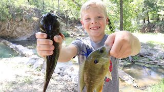 Bullhead Catfish Catch, Clean, and Cook