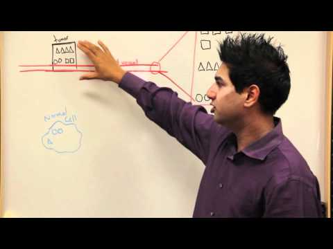 Discovering Biomarkers For Early Cancer Detection (Whiteboard Video)