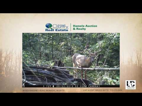 Trophy Hunting Property in Buffalo County WI