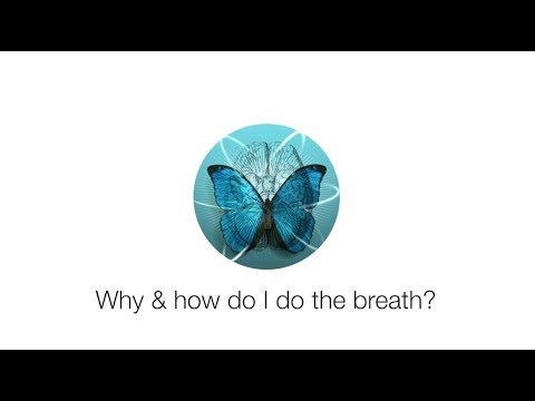 How do I do the breath that Dr  Joe teaches, and why should I do it