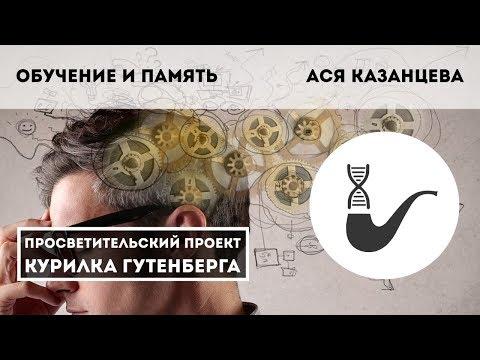 Обучение и память