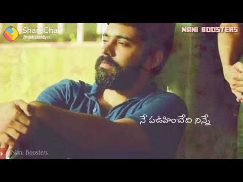 Ne preminchedi ninne| lovely song Telugu WhatsApp status||whatsapp status Telugu HD By SS(2)