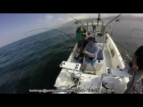The Ultimate Yellowfin Tuna Fishing Experience in Cape Town - Point Runner Charters