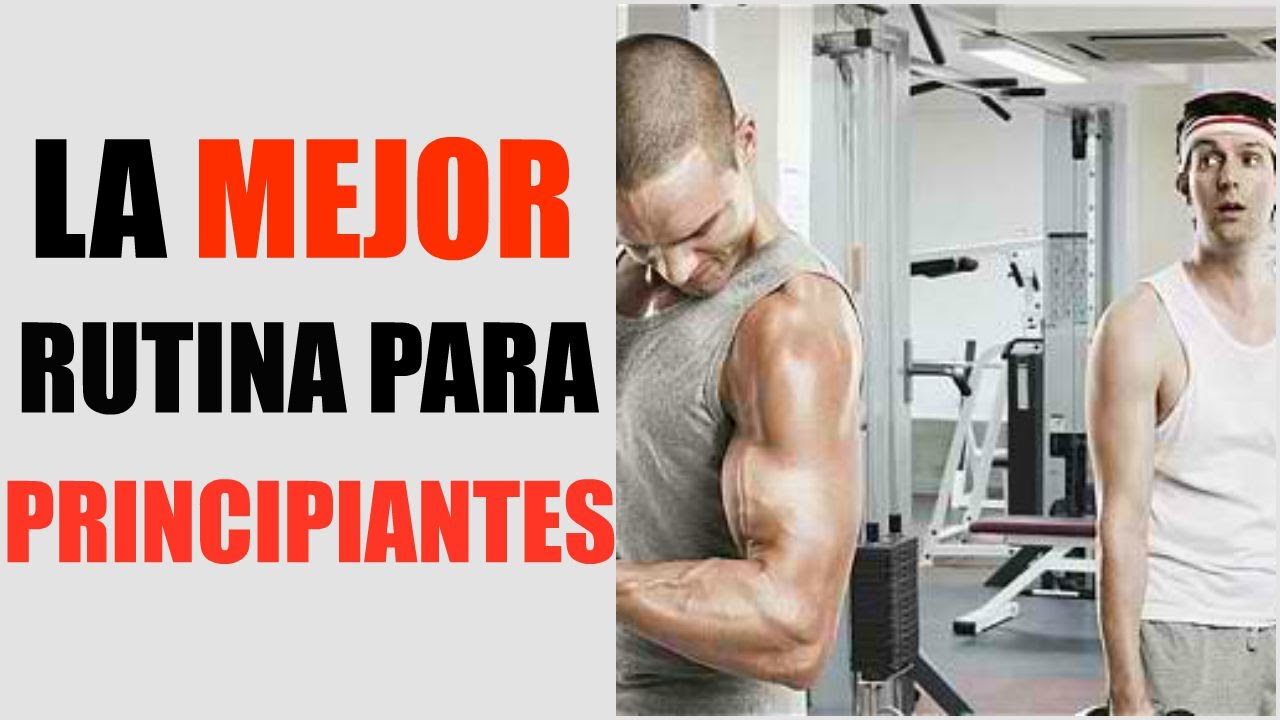 aumentar volumen muscular rapido