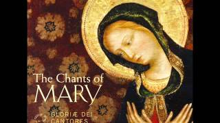 "Gregorian Chant - Salve Regina (Solemn tone) from ""The Chants of Mary"""