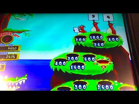 "Big Win (and FUN TIMES!) on ""LUCKY MEERKATS"" (Max Bet!) Slot Machine Bonus Win Videos - 동영상"