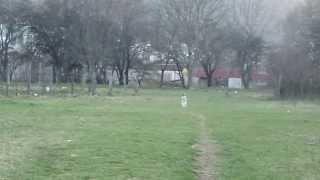 Max Siberian Husky (macedonia) Is Enjoying In The Nature !