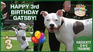 Happy Birthday GATSBY!