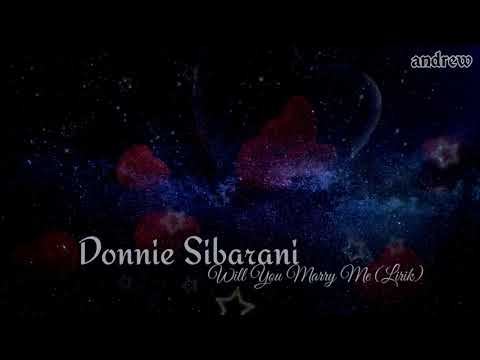 Donnie Sibarani - Will You Marry Me (lirik)