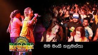 Jaya Sri Reggae Mirissa  මම මන්කී හනුමන්තා