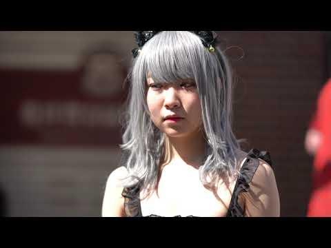 黒猫ちゃん★Part 2【ストフェス2019/第15回日本橋ストリートフェスタ2019/Nipponbashi Street Fair】