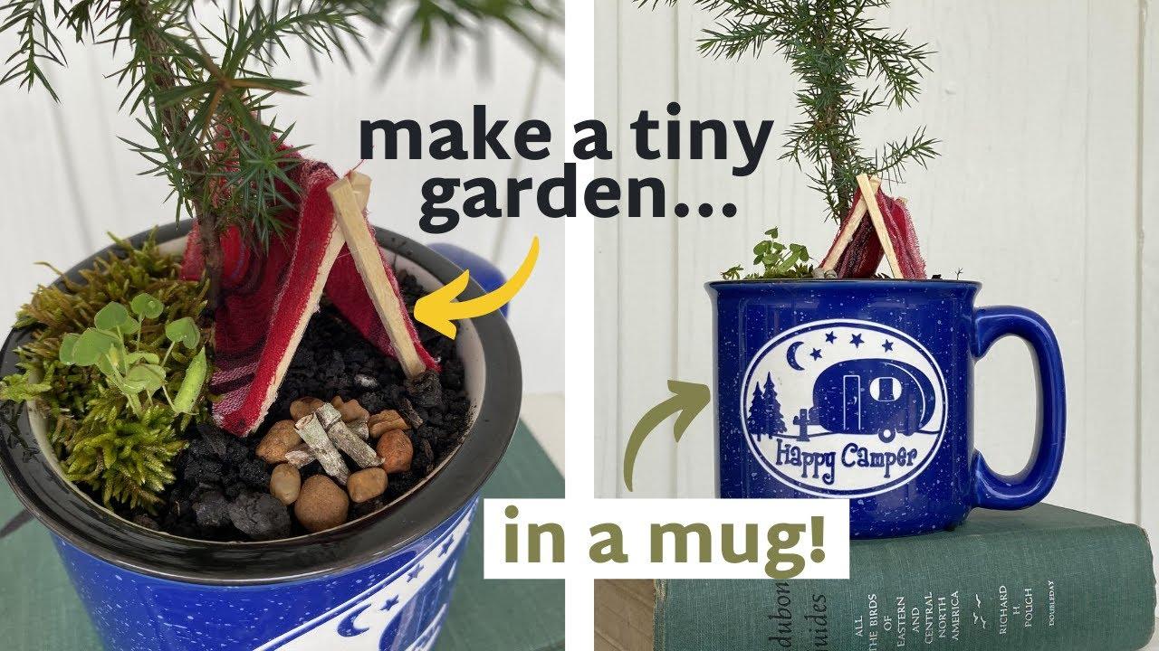 DIY Mini Garden...In A Mug?!
