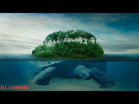 10 ამოუხსნელი ბუნებრივი ფენომენი (ვიდეო)