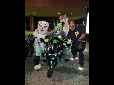 See what happens when a FURRY gets on a FAST motorcycle!!
