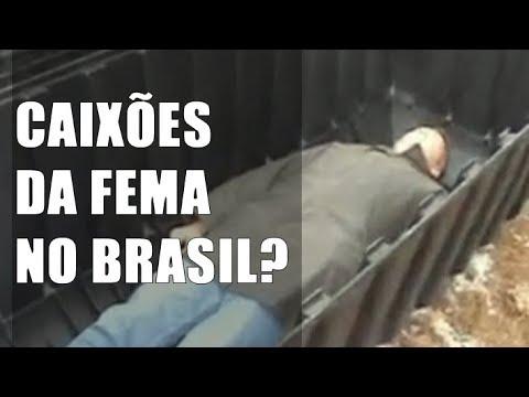 CAIXÕES DA FEMA NO BRASIL