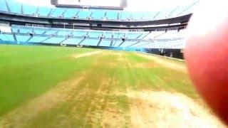 Carolina Panthers Super Bowl Bound Stadium Tour and More