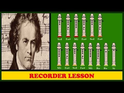 Beethoven - Fur Elise【Recorder Notes Tutorial】