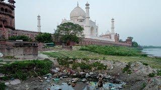 Загрязнение «убивает» Тадж-Махал