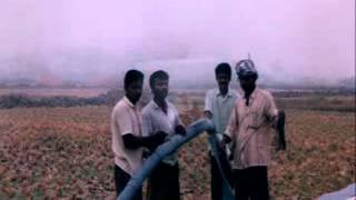 Drainage for Reclamation of Waterlogged Saline Soils – India
