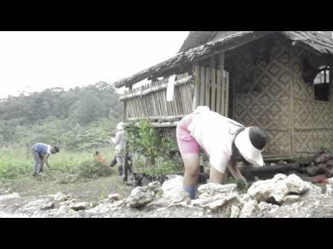 Tree Growing Project in Mayana Jagna Bohol 151011 JD Kaligayahan Foundation Inc