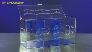 LiveAquaria® Diver's Den® Aquatic Insider: Eshopps Tanklimate Acclimation Box