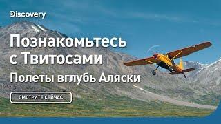Познакомьтесь с Твитосами | Полеты вглубь Аляски | Discovery
