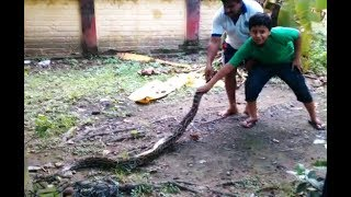 D'DAY WITH PYTHON, python rescued from odisha, angul , talcher