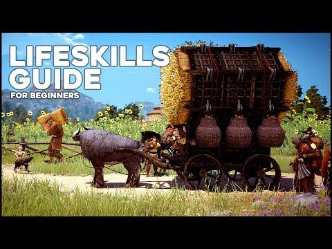 Black Desert Online ► Updated Lifeskills Guide for Beginners (2017)