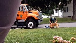 Garbage Man Didn't Know He Was On Camera, What They Caught Him Doing Took My Breath Away