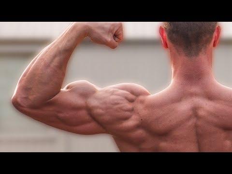 Bigger Biceps &
