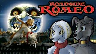 Roadside Romeo: The Furry Bollywood Musical? (Feat. Jinlong)