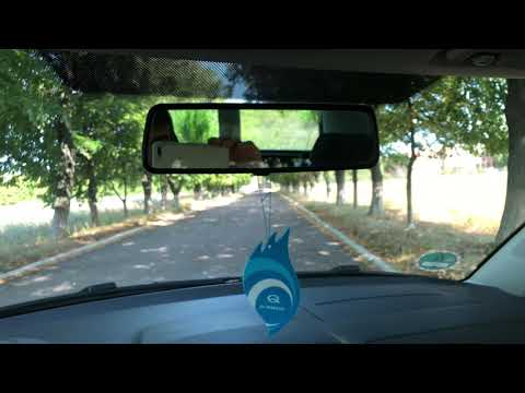 Skoda Roomster 1.4i 16v | Пригон авто из Германии | Растаможка авто 2019 | Cумы авто