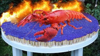EXPERIMENT 50,000 Safety Matches vs CRAB Lobster