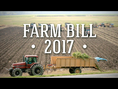 Farm Bill Focus