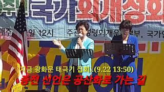 ● 태극기 집회 (광화문. 대한문. 서울역) / 종전 선언은 공산화로 가는 길