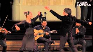 Opera y Flamenco - What we do (01)...