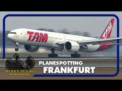 Planespotting Frankfurt Airport | November 2017 | Teil 1