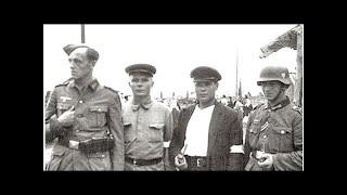 По каким признакам в СССР после войны выявляли предателей и полицаев
