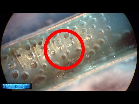 New Evidence Could Change Everything! Proof Of Alien LIFE Removed By Surgeon? 2017
