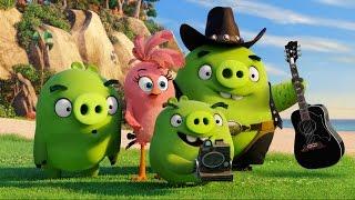 """Angry Birds в кино - смотрите с 12 мая в кинотеатре """"Родина"""""""
